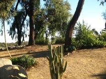 Parc de Balboa Photographie stock libre de droits