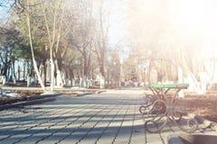 Parc de banc de coucher du soleil au printemps Photos libres de droits