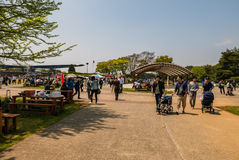 Parc de bord de la mer de Hitachi Photo stock