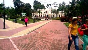 Parc &#x28 de café ; colombia&#x29 ; Image stock