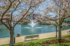 Parc de centre de la ville photos stock