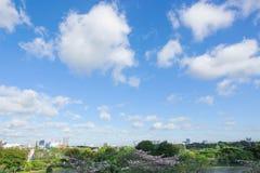 Parc de Chatuchak dans la ville Photographie stock libre de droits