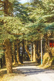 Parc de Chrea Image libre de droits