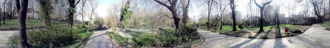 Parc de Cismigiu 360 degrés de panorama Images stock