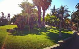 Parc de Comunal Images libres de droits