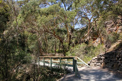 Parc 3 de conservation de Morialta Photos libres de droits
