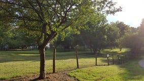 Parc de ferme de McDaniel à Duluth la Géorgie - Forest Walk image libre de droits