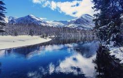 Parc de glacier en hiver Images stock