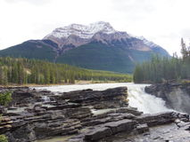 Parc de Jasper National, Cananda Photographie stock libre de droits