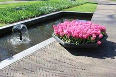 Parc de Keukenhof aux Pays-Bas Image libre de droits