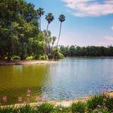 Parc de la Californie photos libres de droits