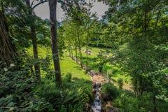 Parc de la Prehistoire in Midi-Pyrenees, France. Stock Images