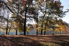 Parc de la Tete d'Or, in Lyon Royalty Free Stock Images