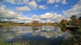 Parc de lac commonwealth avec la réflexion de l'eau des nuages blancs et du ciel bleu à Portland OU banque de vidéos