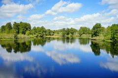 Parc de lac lettuce Images libres de droits
