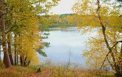 Parc de Lakeside Autumn Colors In Itasca State photos stock