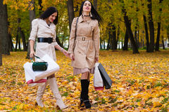 Parc de marche de deux amies avec des achats dans des mains Photographie stock libre de droits