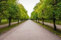 Parc de marche de Peterhof Photos stock