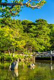 Parc de Maruyama à Kyoto, Japon Photos stock