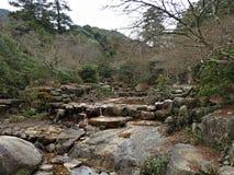 Parc de Momijidani, île de Miyajima, Hiroshima, Japon Photographie stock libre de droits