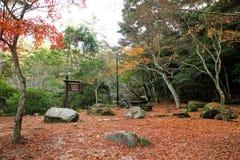 Parc de Momijidani Photographie stock
