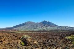 Parc de naitional de volcan de Teide Photographie stock libre de droits