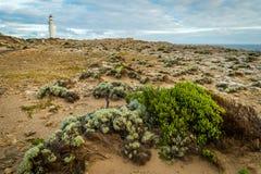Parc de Nelson State de cap près de Portland dans l'Australie Photographie stock libre de droits
