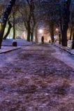 Parc de nuit de Lviv Images stock