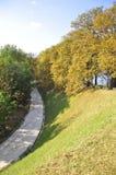 parc de parilly,利昂 库存照片