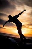 Parc de patin de plage de Venise Images libres de droits