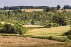 Parc de paysage de Suwalki, Pologne Photographie stock libre de droits