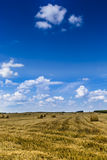 Parc de paysage de Suwalki, Pologne Photographie stock