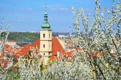 Parc de Petrin, Prague Photographie stock