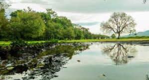 Parc de Phayeng Chakpa Hei-u Images libres de droits