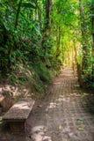 Parc de ponts accrochants de Mistico Arenal photos libres de droits