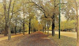 Parc de Prater sur des feuilles d'automne à Vienne photo stock