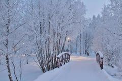 Parc de résidence dans des manteaux d'hiver photos stock