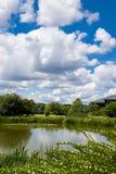 Parc de recherche de Surrey Photo libre de droits