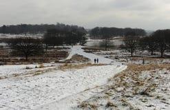 Parc de Richmond dans la neige photographie stock libre de droits