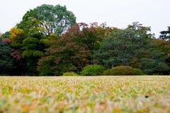 Parc de Rikugien en automne Images stock