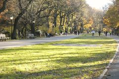 Parc de rive photo stock