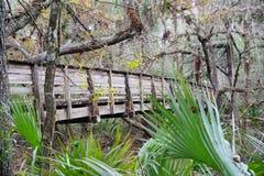 Parc de rivière de Hillsborough Images stock