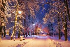 Parc de soirée après des chutes de neige Images libres de droits