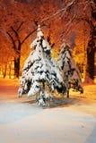 Parc de soirée après des chutes de neige Photographie stock