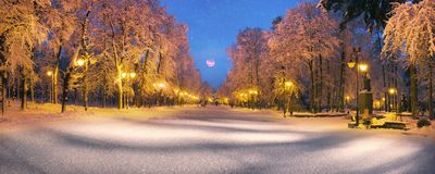 Parc de soirée après des chutes de neige Photographie stock libre de droits