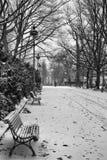 Parc de Thabor vers Rennes pendant l'hiver france image stock