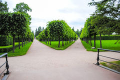 Parc de Tsarskoye Selo Image libre de droits