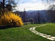 Parc de Valentino Photos libres de droits