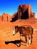 Parc de vallée de monument, paysage Arizona, Utah Images libres de droits