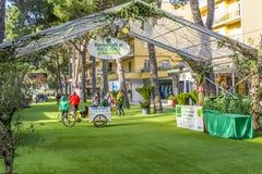 Parc de vert de Riccione Photos libres de droits